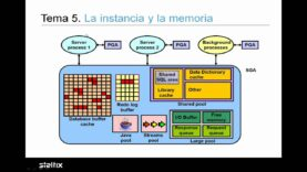 Base Datos Oracle 11G