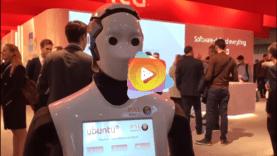 Los robots se roban