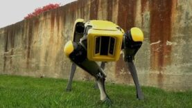Boston Dynamics teases updated robot dog, SpotMini (Ingles).