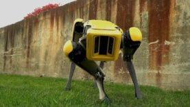 Boston Dynamics teases updated robot dog, SpotMini (Ingles).