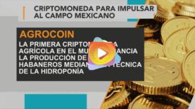 Agrocoin