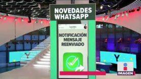 ¿Cuáles son las novedades que tiene Whatsapp para ti?