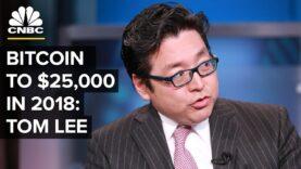 Bitcoin va a $ 25,000 para fin de año.