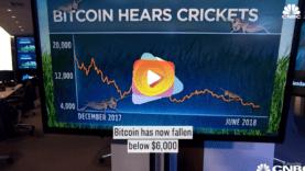 bitcoy