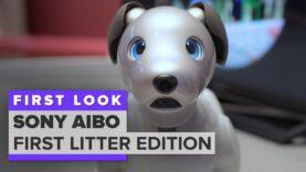 Jugamos con Aibo: el perro robot de $ 2,899 de Sony.