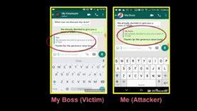 Una vulnerabilidad en WhatsApp.