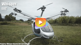 dronese