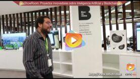 ShowRoom: Proyectos de Innovación sobre Inteligencia Artificial y BlockChain