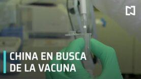 E.E.U.U. Gran Bretaña y China, buscan una vacuna contra COVID-19