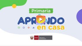 primaria 01