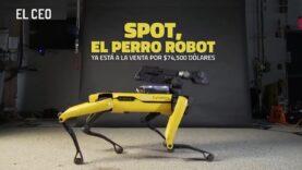 Spot, el perro robot