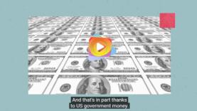 dinero covid