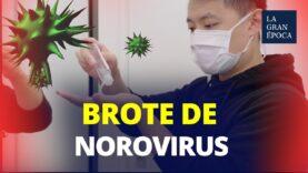 Brote de norovirus en una universidad china