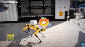 robot25