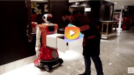 robot camadero