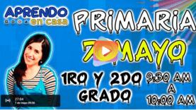 primaria 07